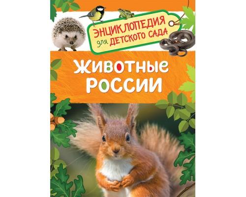 Животные России Энциклопедия для детского сада Росмэн