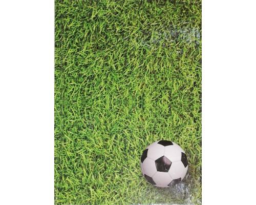 Блокнот КП А6 80л тв.обл БТ6-80-11 Футбол