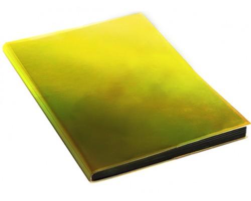 Ежедневник КЭ А5 136л Chameleon Золото недатир кожзам ЕКХ51813603