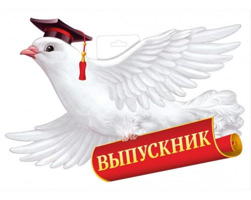 Плакат ИмП 933 Голубь выпускник 59.035.00