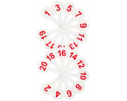 Грамматический веер Стамм цифры 1-20 ВК05