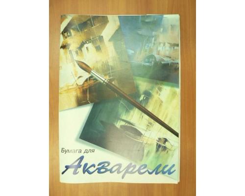 Акварельная бумага А2 20л Балет 200г/м2 в папке ПА2/20