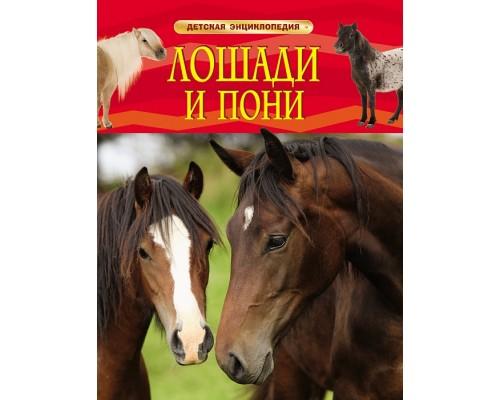 Лошади и пони Детская энциклопедия Росмэн
